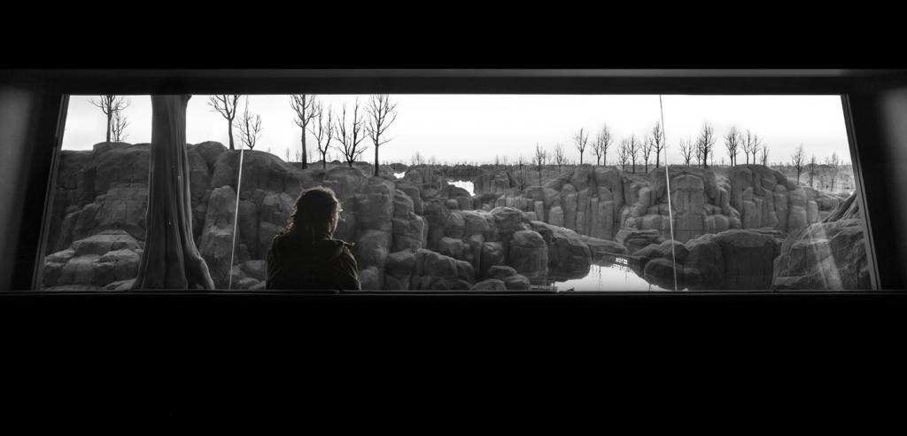Het stille uitzicht.