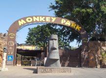 Monkey Park.  Nice!